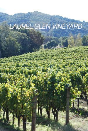 Laurel Glen Sonoma Mtn view 2